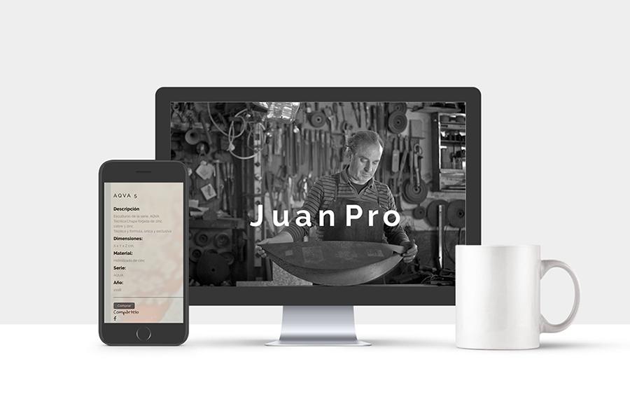 web Juan Pro